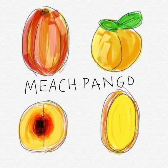 """Fresh Fruit"" by Meach Pango // Hand Drawn Records"